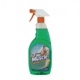 Mr Muscle Window and Glass Cleaner 750ml 670612