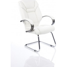Galloway Visitor Cantilever White Leather With Arms